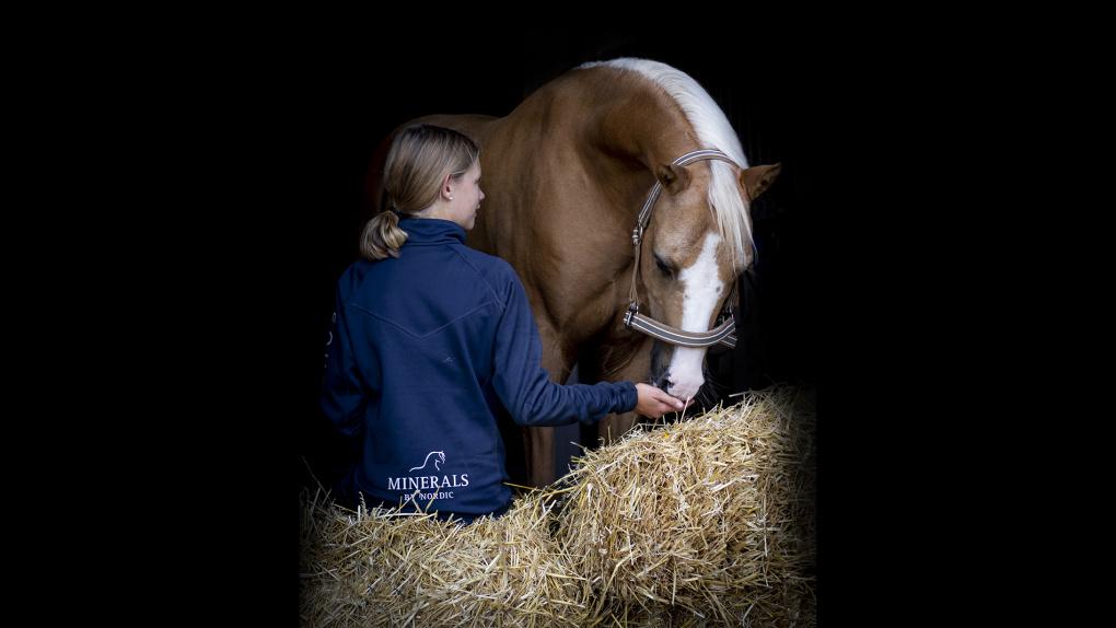 foderstat häst mall